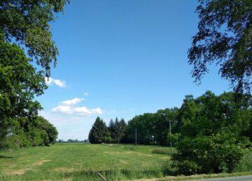 Gärtnerei, Land- oder Forstwirtschaftsbetrieb: Aussenbereichs-Fläche 21683 Stade, Land-/Forstwirschaft